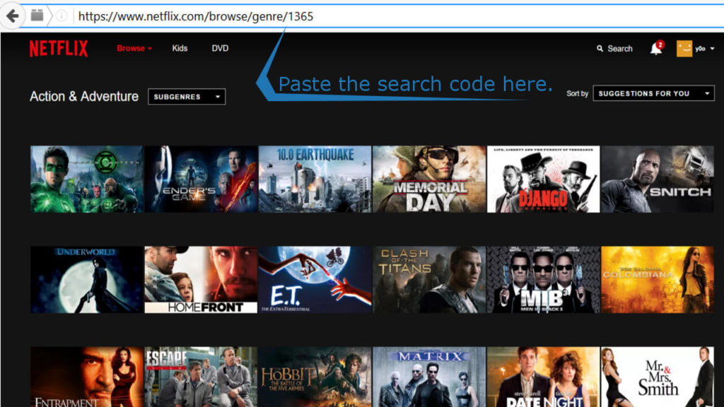 paste the netflix search code